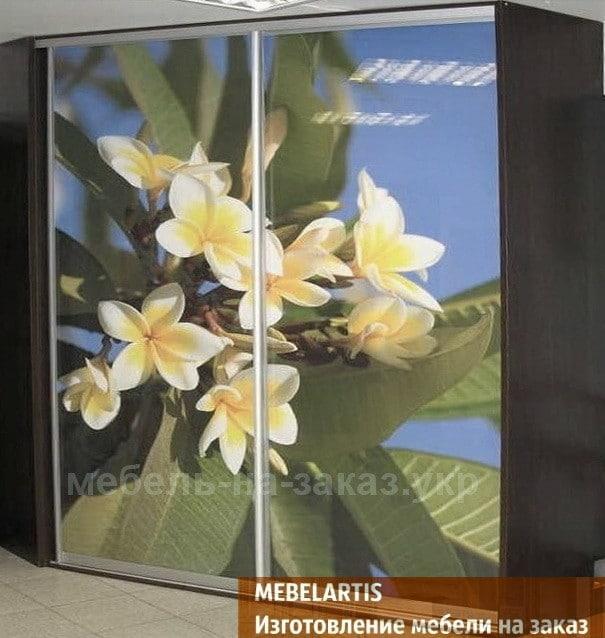 Изготовление нестандартных шкафов-купе с цветами