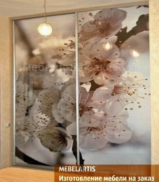 Изготовление нестандартных шкафов-купе с фотопечатью Одесса