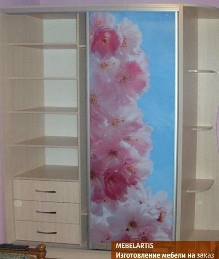 дизайнерский шкаф с фотопечатью на заказ в Чернигове