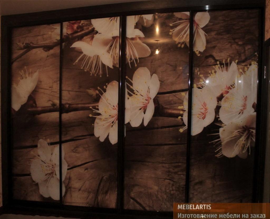 шкаф с фотопечатью изготовленный на заказ в Киеве