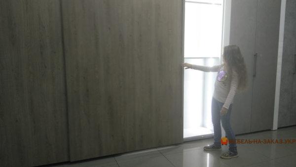 встроенный шкаф-купе в гостинную Ирпень
