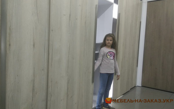 шкаф с раздвижными дверями в спальню Печерский район