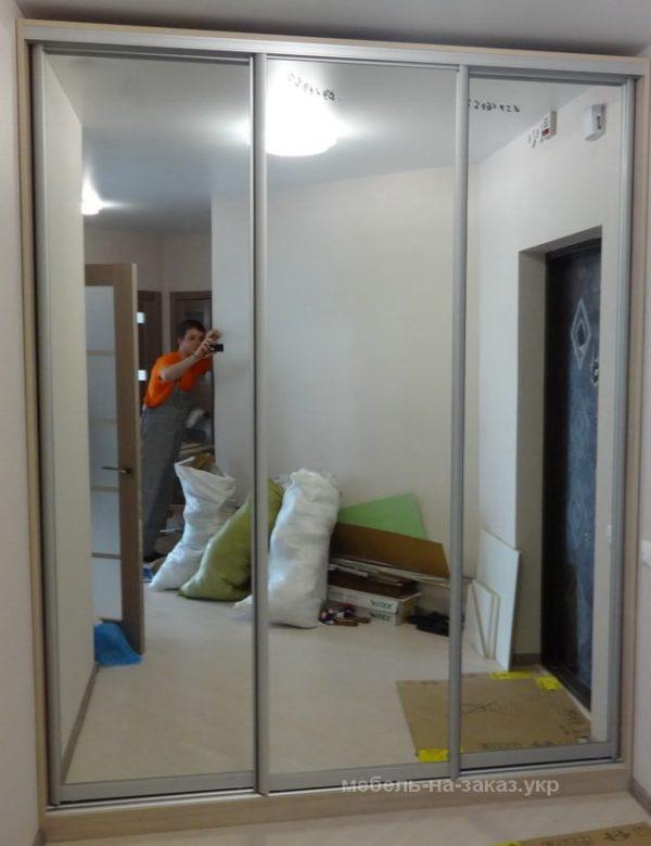 шкаф-купе в коридор Софиевская борщаговка