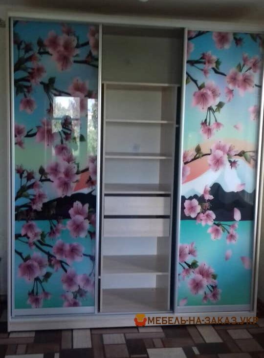шкаф в коридор с фотопечатью на заказ